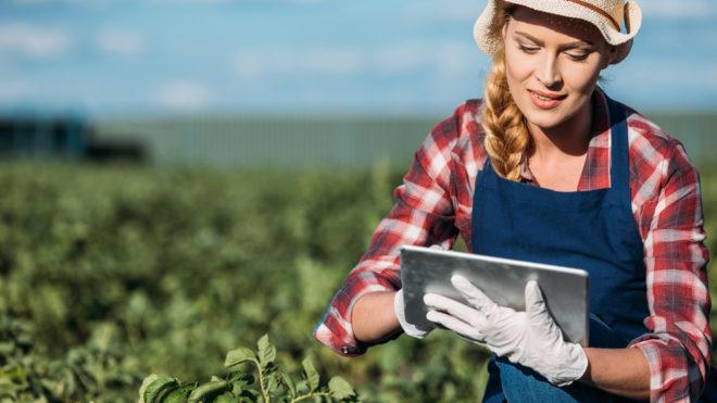 Особенности банкротства сельскохозяйственных (фермерских) предприятий